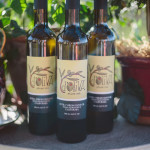 California Olive Oil Council